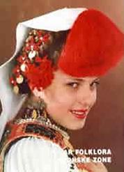 Zbornik radova 8 Seminara folklora Panonske zone